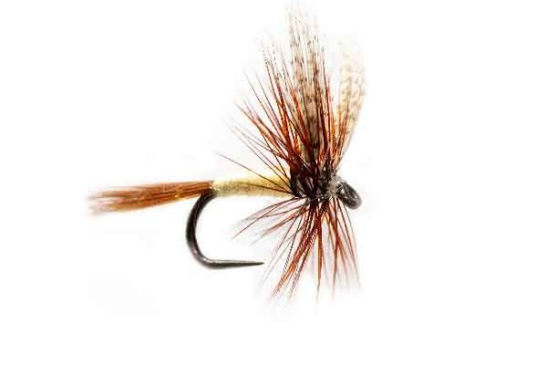 Fishing Fly Gray Fox Dry Fly