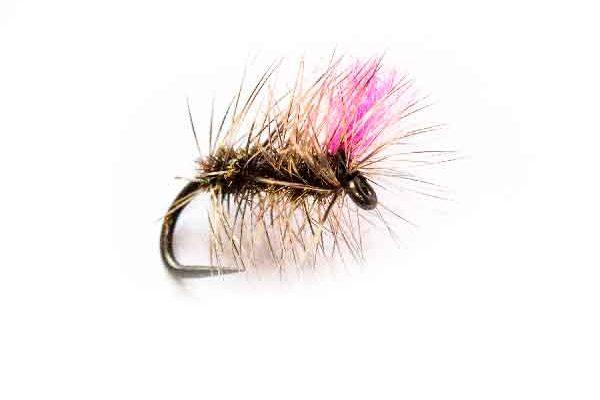 Fishing Flies Hi Vis Griffiths Gnat