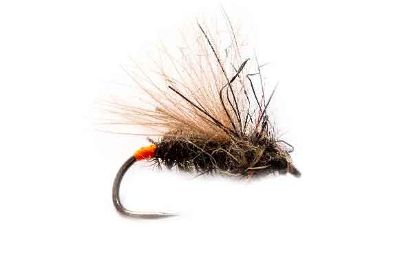 Fishing Flies Orange Tag Peacock Sedge