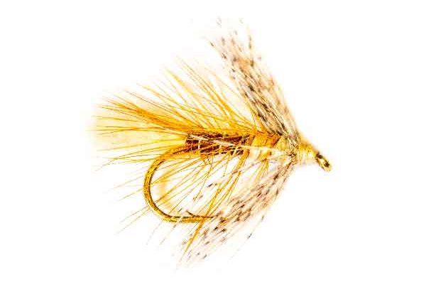 Brown & Partridge Wet Fly