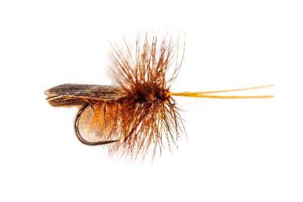 Sedge Type Dry Flies
