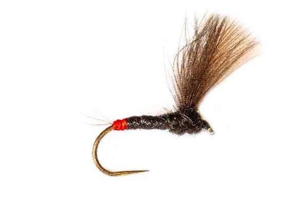 Killer Fishing Fly Roz French V Wing CDC